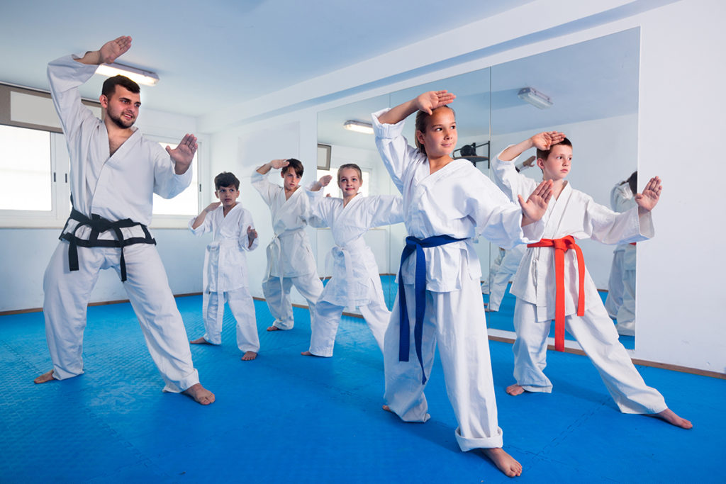 karate lessons montgomery county pa