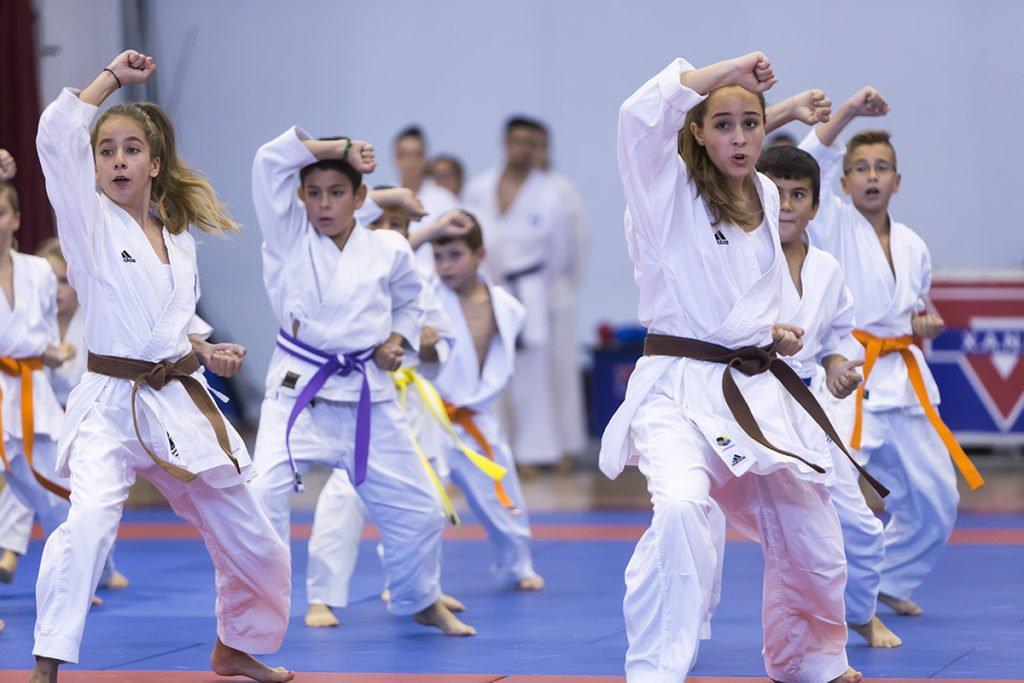 karate telford
